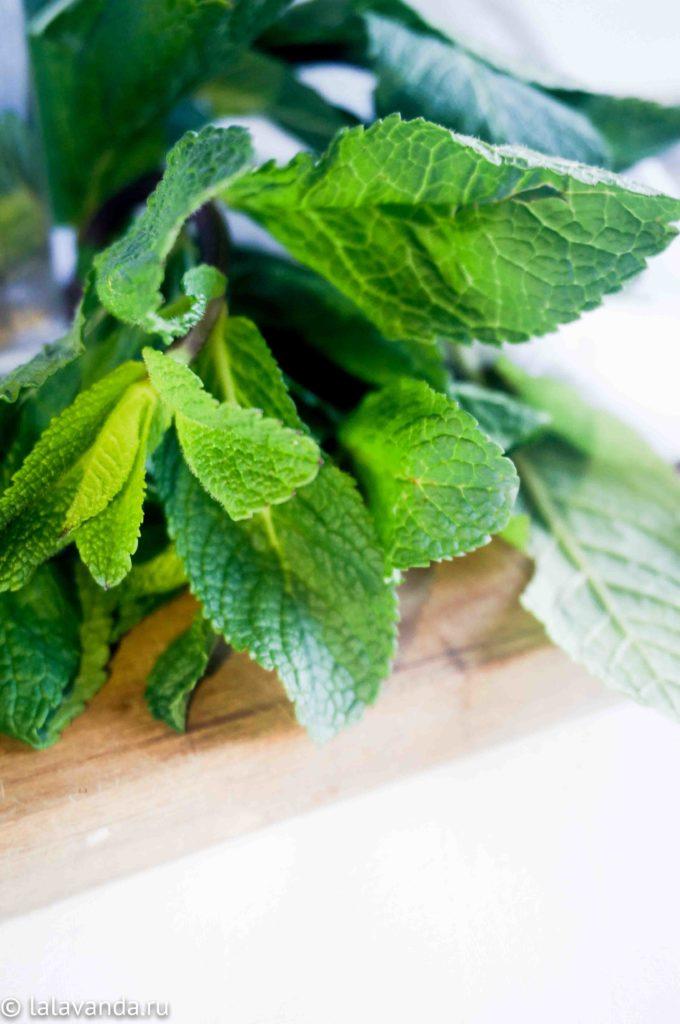 Домашний ополаскиватель для рта с мятой и чайным деревом. Свежее дыхание, защита от кариеса и воспалений десен.