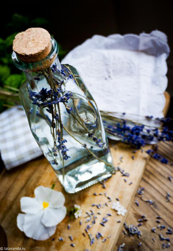 Бытовая химия своими руками: лавандовый уксус для уборки