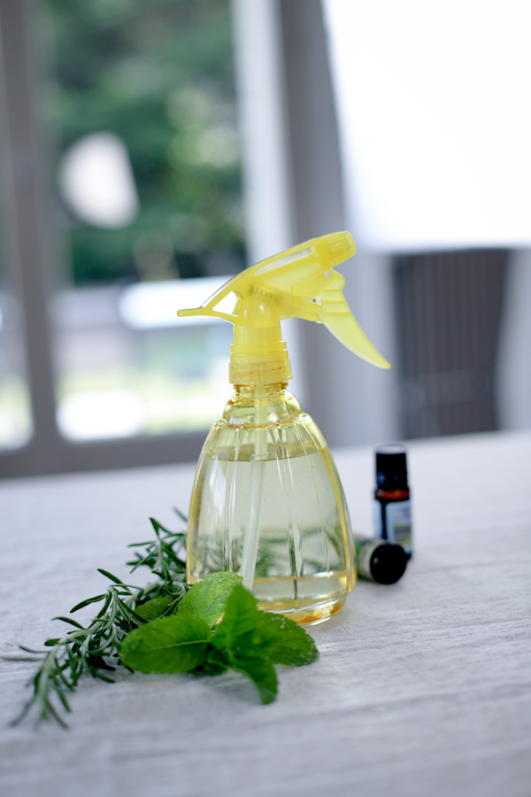 Спрей для уборки на кухне, бытовая химия своими руками - 4 простых рецепта
